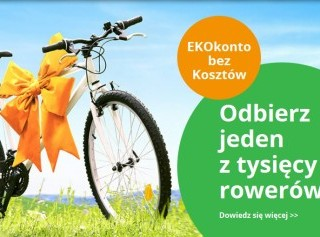 bos bank rower
